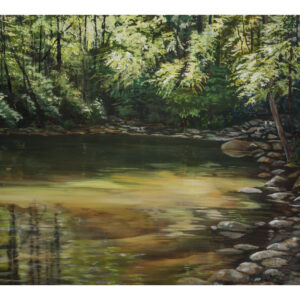 Still Hole on Santeetlah Creek- print